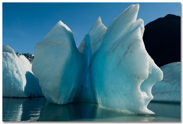 JamesBALONG-2007-FromICE_vanishing_icebergs