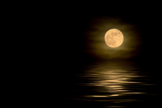 luna_amarilla_fondo_negro_muralesyvinilos_11978136__XL