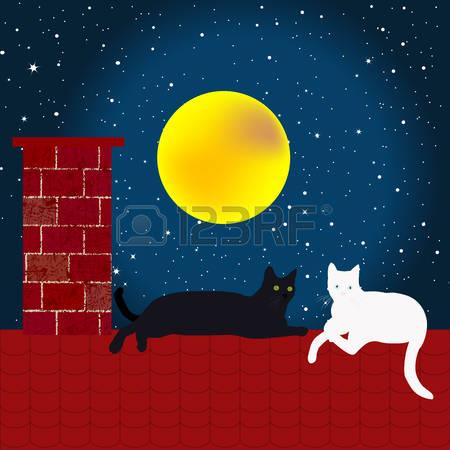44912310-gatos-blancos-y-negros-en-el-techo-en-la-noche