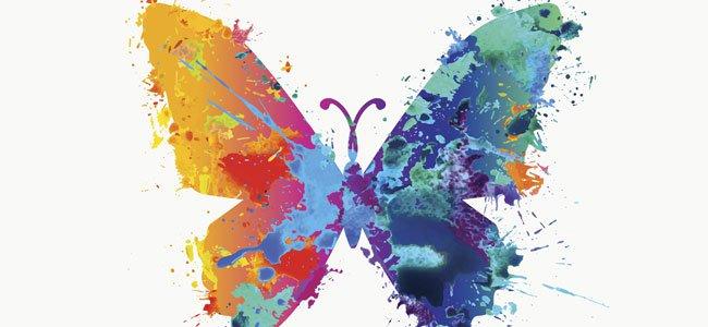 mariposa-colores-p