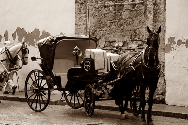 carreta-caballos
